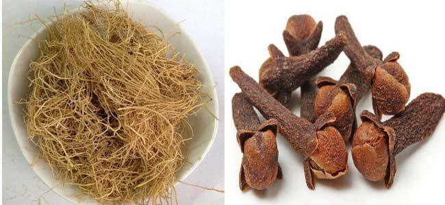 Chống mối mọt cho sàn gỗ bằng nụ đinh hương và tế tân