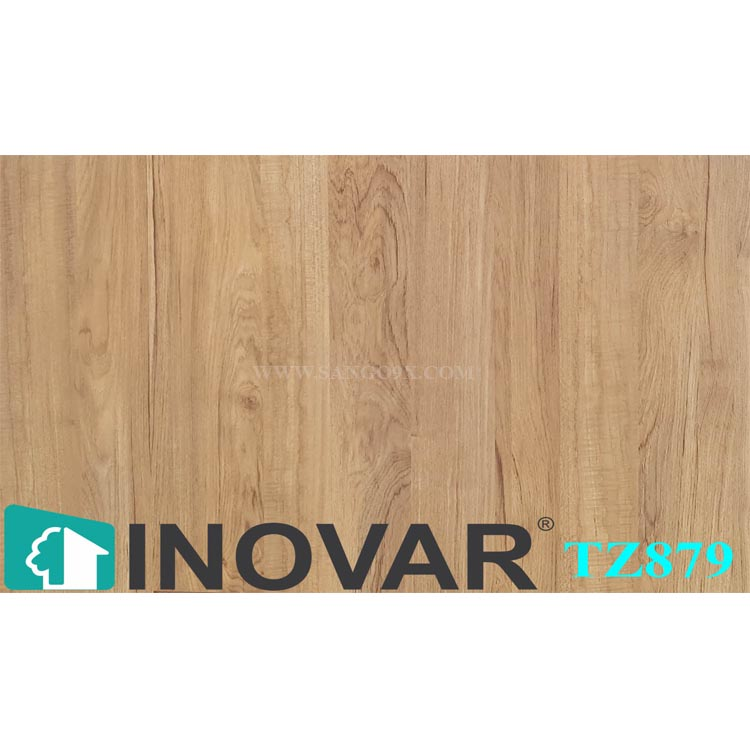 Inovar TZ879